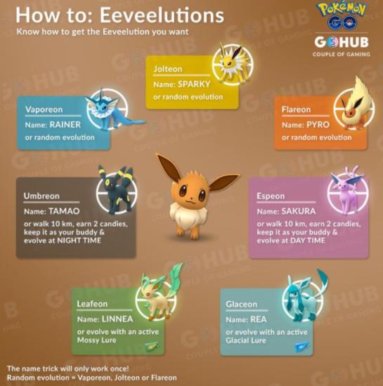 eevie evolution